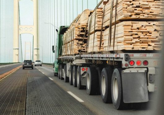 Transportwagen met boomstammen